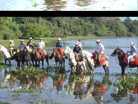 Pantanal Mato Grosso do Sul- Brasil