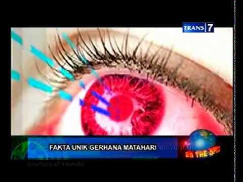 On The Spot  Fakta Unik Gerhana Matahari