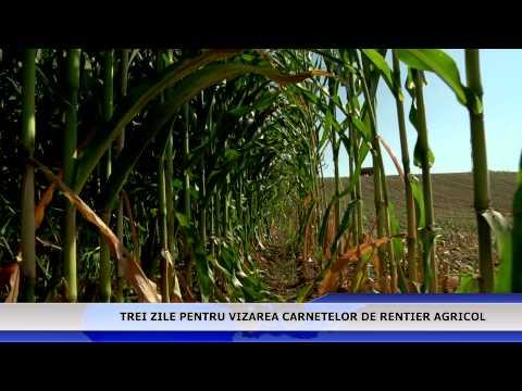 Trei zile pentru vizarea carnetelor de rentier agricol