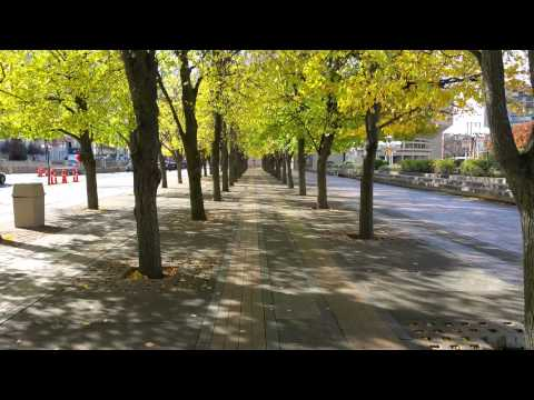 Samsung Galaxy Note 4 4K Video Sample