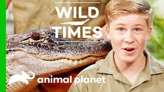 Kangaroos and Alligators, Oh My! | Wild Times - ANIMALPLANETTV