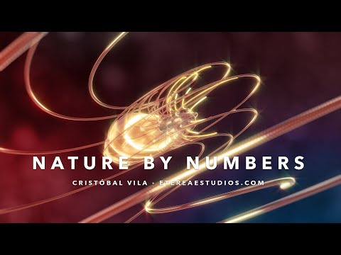 Espectacular corto: «Nature by Numbers»