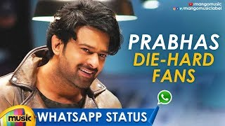 Prabhas Die Hard Fans Special WhatsApp Status | Prabhas Super Hit Video | Saaho | Mango Music - MANGOMUSIC