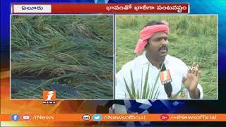 #PhethaiCyclone Destroyed  Massive Paddy Crops In Eluru   West Godavari   iNews - INEWS