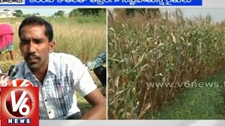 Farmers facing problems with lack of water resource and power supply - Nizamabad - V6NEWSTELUGU
