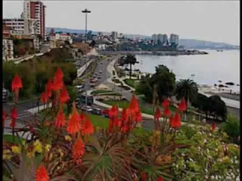 Study in Via del Mar, Chile with ASA Video