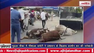 video : गुहला चीका में गौशाला कमेटी ने प्रशासन के खिलाफ प्रदर्शन कर की नारेबाजी