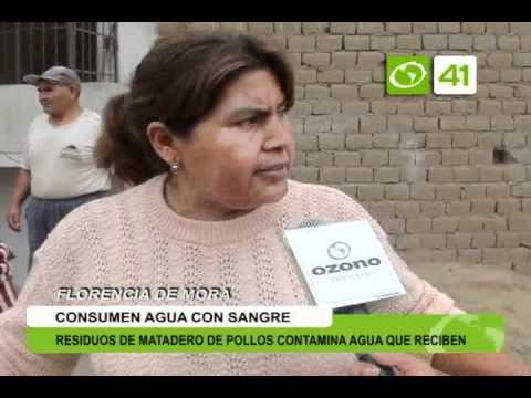 Residuos de matadero de pollos contamina agua de pobladores - Trujillo