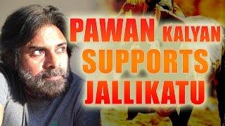 Pawan Kalyan supports Jallikattu | #Jallikattu | #Jallikattuprotest | #jallikattuissue | #janasena - IGTELUGU