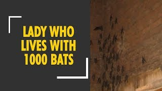 Meet 75-year-old woman living with thousands of bats in Gujarat - ZEENEWS
