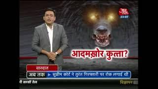 आदमखोर कुत्ता ! भारत में कुत्तों के काटने से हर साल 20 हज़ार मौतें - AAJTAKTV