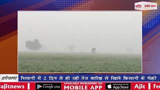 video : भिवानी में 2 दिन से हो रही तेज बारिश से खिले किसानों के चेहरे