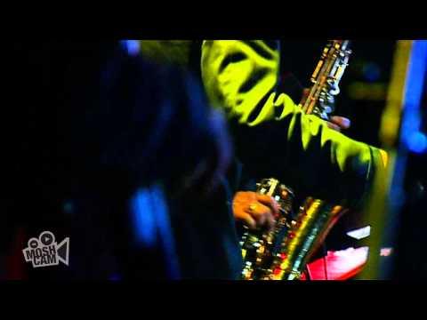 Royal Crown Revue - Zip Gun Bob | Live in Sydney | Moshcam