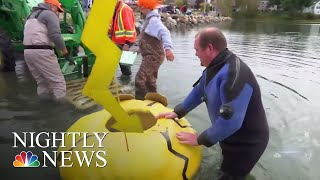 Maine Pumpkinfest Holds Annual Pumpkin-Boat Regatta | NBC Nightly News - NBCNEWS