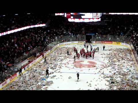 Ice hockey stadium teddy bear toss