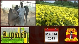 Uzhavan 14-03-2015 A Complete Information on Agriculture (14/03/2015) – Thanthi TV News
