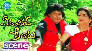 Evandoy Sreevaru Movie - MS Narayana, Sunil Nice Funny Scene - IDREAMMOVIES