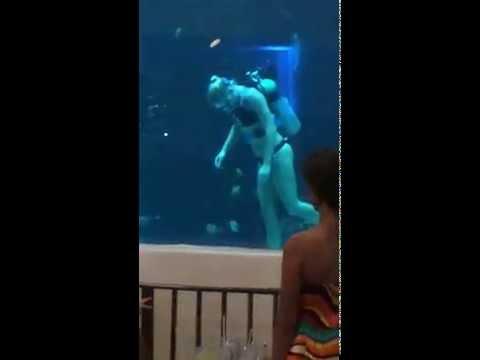 Women Scuba Divers Pacific Beach Hotel Waikiki Honolulu 2014