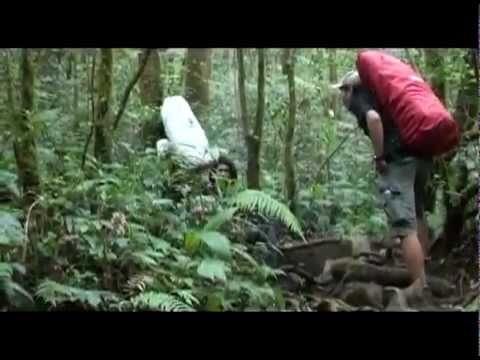 Gunung Gede Pangrango National Park P1
