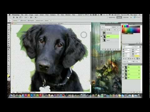 Adobe Photoshop CS5 Tutorial - How to Remove A background From an Image