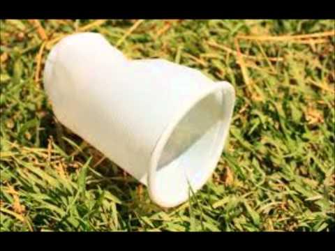 el vaso desechable - Anthony Rios