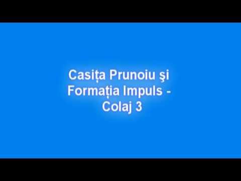 Casita Prunoiu si Formatia Impuls Craiova - Colaj 3
