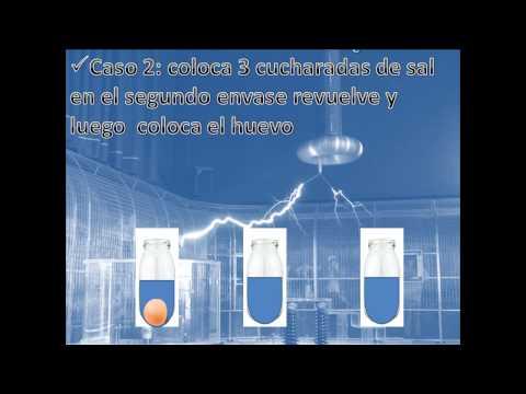 Experimento: Principio de Arquímedes