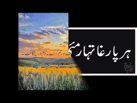 ghani jan brahvi songs