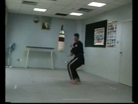 Okinawa-Te  Karate-do sixth video