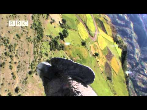 Earthflight - Condor's Birds Eye View of the Andes (Narrated by David Tennant)