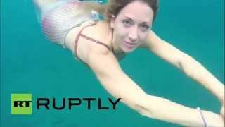 عروسة البحر تظهر في جزر الكناري
