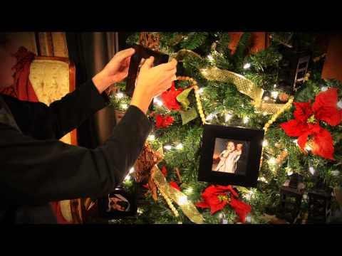 Holiday 2011: Twelve Days of Christmas
