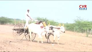 Bullock Cart Racing Competition in Nalgonda Dist | CVR News - CVRNEWSOFFICIAL