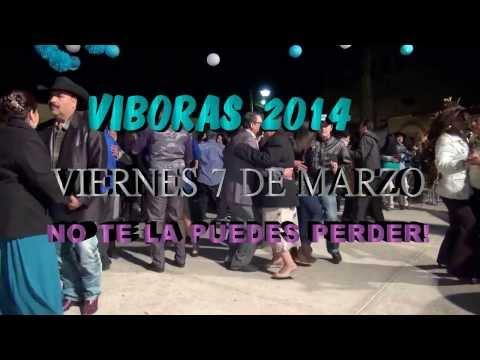 VIBORAS 2014 ! - VIBORAS  ZACATECAS