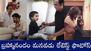 Brahmanandam Grandson Partha Latest Adorable Moments - RAJSHRITELUGU