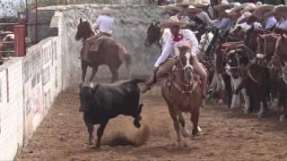 Coleaderos en Nochistlán de Mejía (Nochistlán de Mejía, Zacatecas)