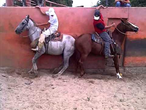 OMAR RAMIREZ CHAPEANDO A TRAGO DE RON PARTE 2