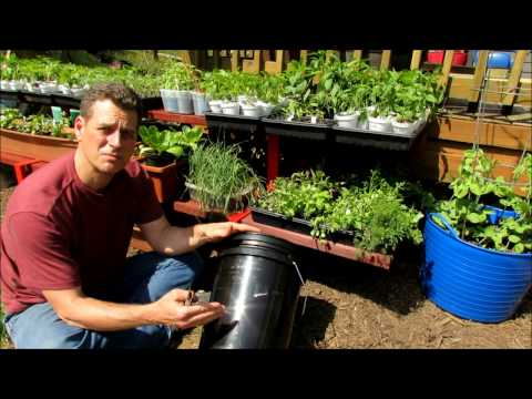 Setting Up a 5 Gallon Container for Gardening: Line It/Food Safe, Drainage Hole & Reservoir