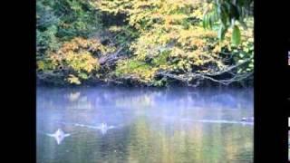 紅葉の鎌北湖でヘラブナ釣り 埼玉応援ドットネット公式チャンネル - YouTube