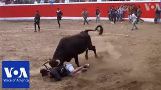 At least 10 injured in first day of bullfighting festival in Peru - VOAVIDEO