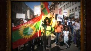 Oromo Students in Germany Take to the Streets to Protest Human Rights Violations in Oromia (Video: Bilisummaa.info)