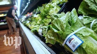What's going on with romaine? - WASHINGTONPOST