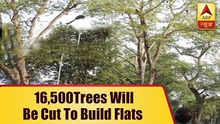 16,500 Trees Will Be Cut To Build Flats For Govt Employees | ABP News - ABPNEWSTV