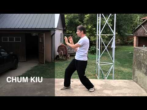Wing Chun Form Chum Kiu - Dusan Drazic - Ving Tsun forms