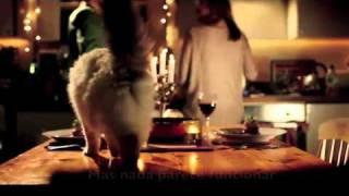 Porque toda mulher solteira tem gato view on youtube.com tube online.
