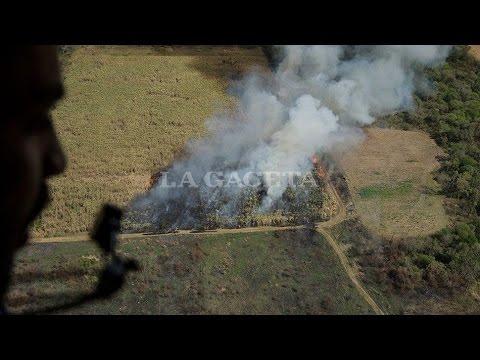 Mirá desde el aire como arden decenas de campos de azúcar en Tucumán