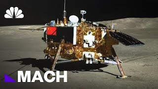 China's Experiment Proves Life Is Possible On The Moon | Mach | NBC News - NBCNEWS