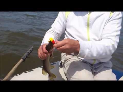 летняя рыбалка в удмуртии видео