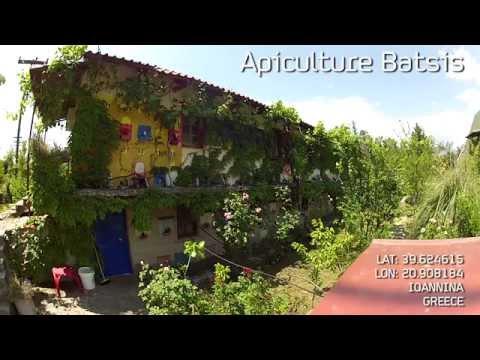 Βασίλισσες από το Κέντρο Μελισσοκομίας Μπατσή - A visit to Batsis Apiculture