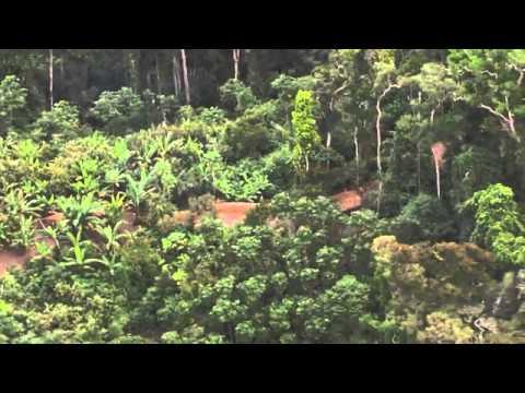 Perkampungan Orang Asli Yang Aneh Di Amazon